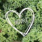 biovrt logo