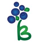 Eko borovnice Lisjak logo